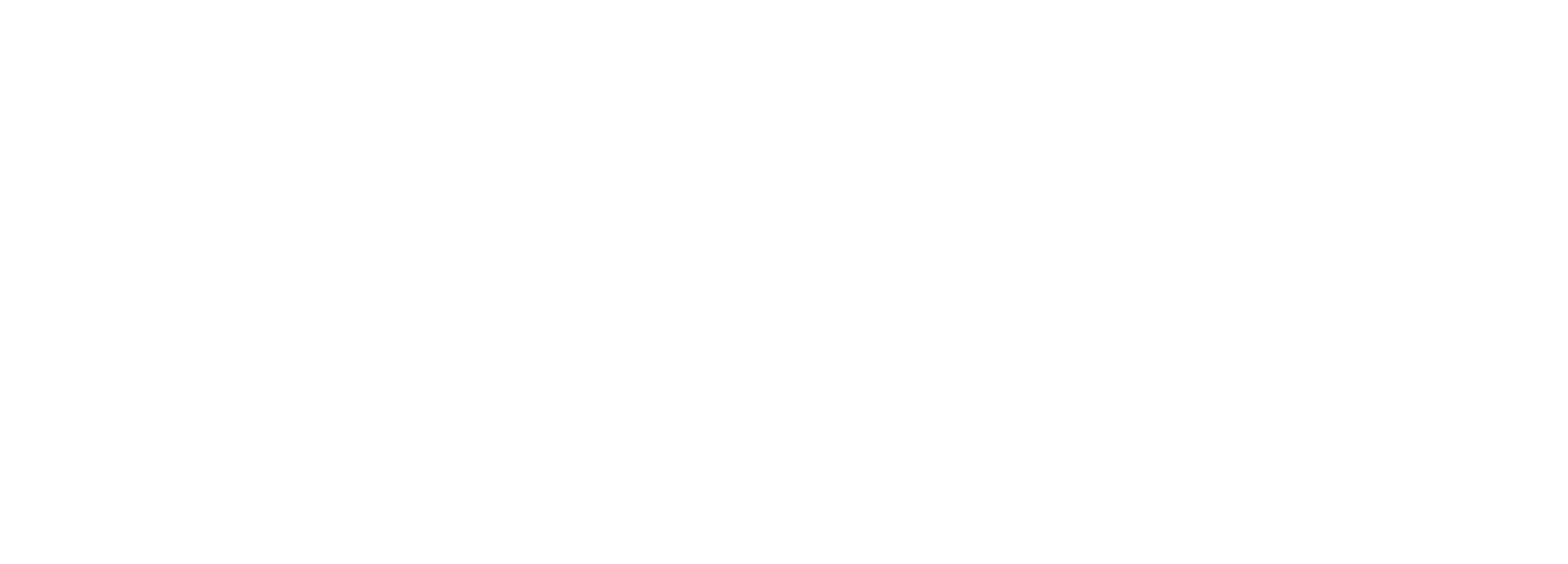 The Fashion Design & Merchandising Logo